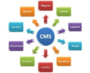 CMS et créateurs de sites internet
