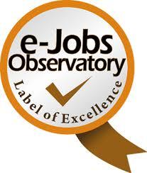 e-Jobs Observatory for e-jobs, e-skills and e-competencies - JL Gestion